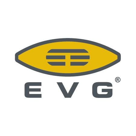 EV Group (EVG)